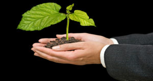 Why Businesses Need To Think About The Environment